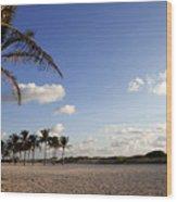 South Beach Miami Wood Print