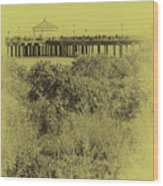 South Beach Pavilion Wood Print