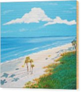 South Carolina Beach Wood Print