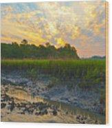 South Carolina Summer Sunrise Wood Print