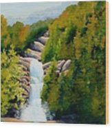 South Carolina Waterfall Wood Print