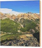 South Chile Patagonia Wood Print
