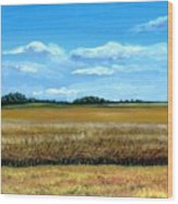 South Dakota Summer Wood Print