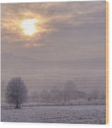 South Downs Hoar Frost Wood Print