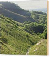 South Downs Wood Print
