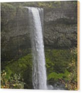 South Falls Of Silver Creek II Wood Print