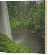 South Falls Vista Wood Print