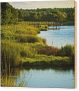 South From The Causeway Huntington Beach State Park Sc Wood Print