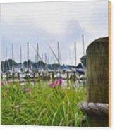 South Haven Marina Wood Print