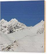 South Island White Peaks Wood Print