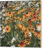 South Lake Tahoe Flowers Wood Print