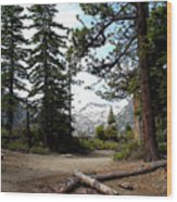South Lake Tahoe Mountain Trail Wood Print
