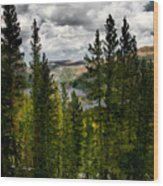 South Lake Through The Pines Wood Print