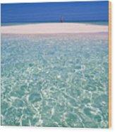 South Pacific Sandbar Wood Print