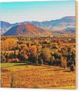 South Reno In Fall Wood Print