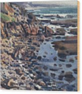 South To Pigeon Point Wood Print