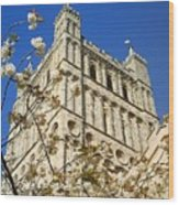 South Tower Exeter Cathedral Wood Print