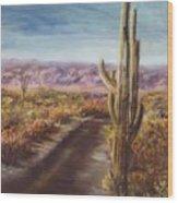 Southern Arizona Wood Print by Jack Skinner