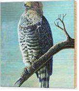 Southern Banded Snake Eagle Wood Print