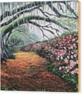 Southern Charm Oak And Azalea Wood Print