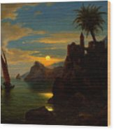 Southern Coastal View By Moonlight Wood Print