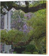 Southern Columns Wood Print