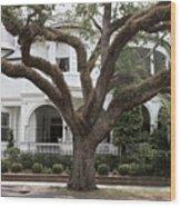 Southern Home Wood Print