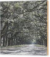 Southern Homecoming Wood Print