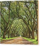 Southern Lane 5 Wood Print