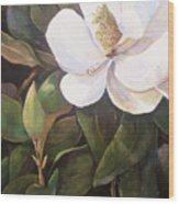 Southern Magnolia Wood Print