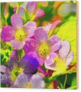 Southern Missouri Wildflowers 1 - Digital Paint 1 Wood Print