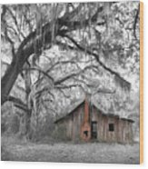 Southern Past Ll Wood Print