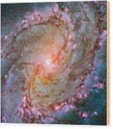 Southern Pinwheel Galaxy - Messier 83 -  Wood Print