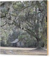 Southern Shade Wood Print