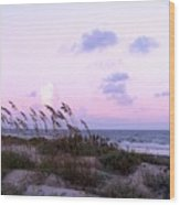 Southern Shoreline Wood Print