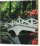 Southern Splendor Wood Print