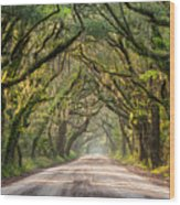 Southern Tree-lined Dirt Road Of Dreams Wood Print
