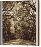 Southern Welcome In Sepia Wood Print