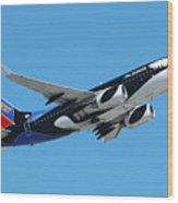Southwest Boeing 737 Shamu At Sky Harbor April 13 2006 Wood Print