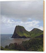 Southwest Coast Of Maui Wood Print