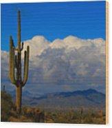 Southwest Saguaro Desert Landscape Wood Print