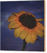 Southwest Sunflower Wood Print