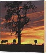 Southwestern Sunrise Color, Silhouetted Oak Tree And Three Horses Wood Print