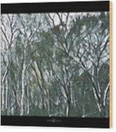 Southwind Woods Wood Print