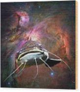 Space Fish Wood Print