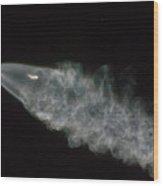 Spacex Iridium Flight 4 Wood Print