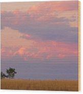 Spacious Skies Amber Waves Of Grain Boulder County Wood Print