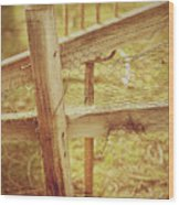 Spading Fork On Chicken Wire Fence Morning Sunlight Wood Print