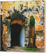 Spanish Fort Doorway Wood Print