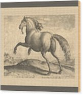 Spanish Horse Renaissance Engraving Wood Print